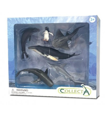 Set 6 figurine Collecta - Viata Marina - Figurine