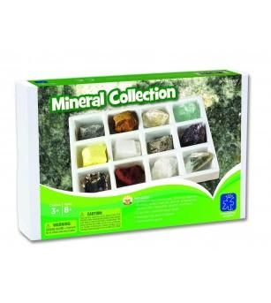 Kit paleontologie - Minerale - Mediu înconjurător
