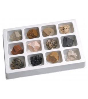 Kit paleontologie - Roci sedimentare - Mediu înconjurător